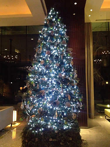 palacehotel-tree.jpg