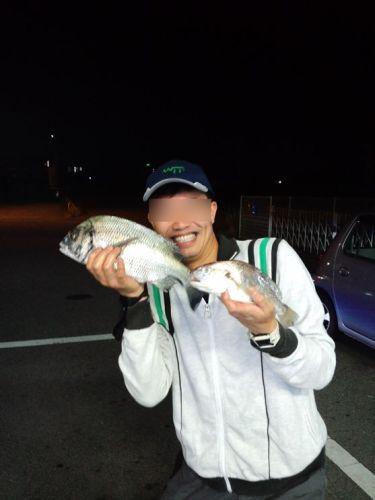 2012.6.1_R.JPG