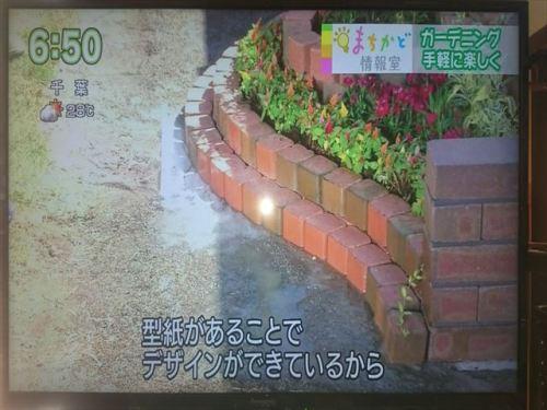 DSC_0442_R.JPG