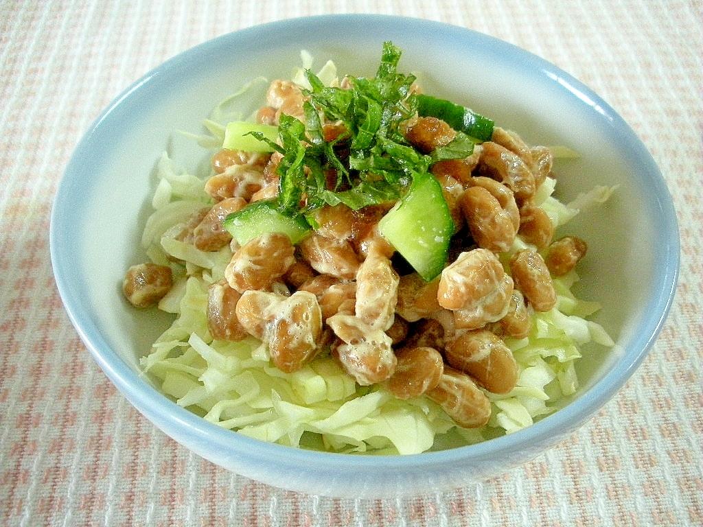 キャベツ サラダ レシピ 人気