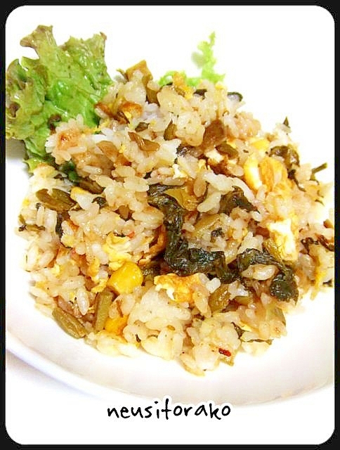 炒飯の素で高菜炒飯