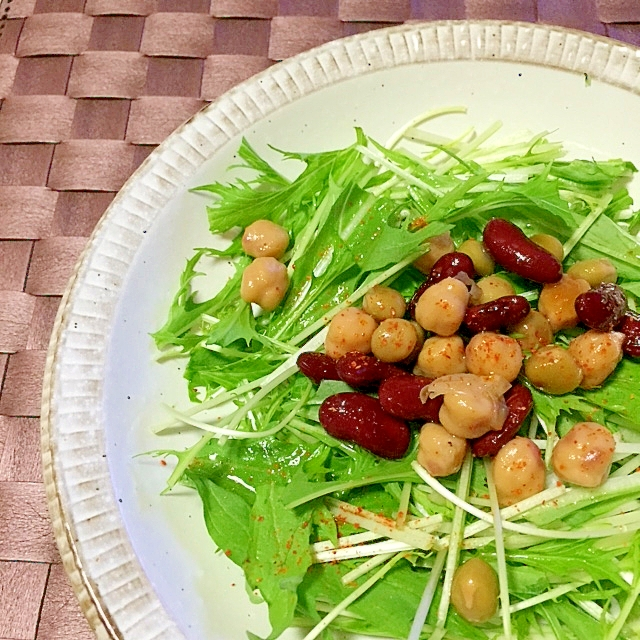ミックスビーンズのマリネと水菜のサラダ