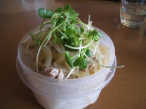 豚煮込み☆カイワレ