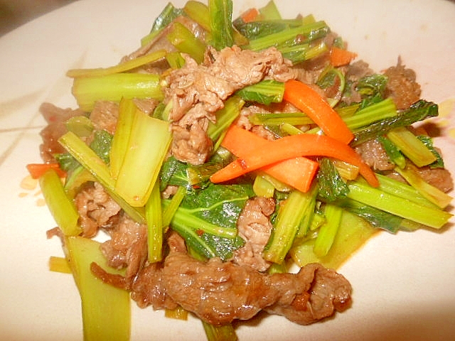 牛肉と小松菜の豆板醤炒め