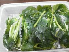 便利★三つ葉を冷凍保存