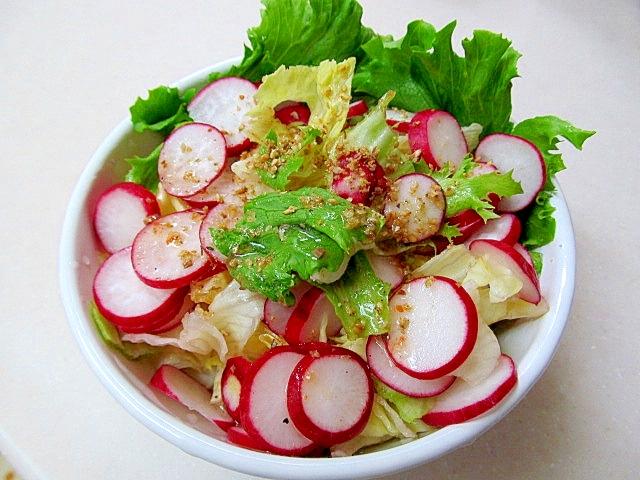 *ラディッシュとレタスのごまサラダ* レシピ・作り方 by ぶるぶるらぶ|楽天レシピ