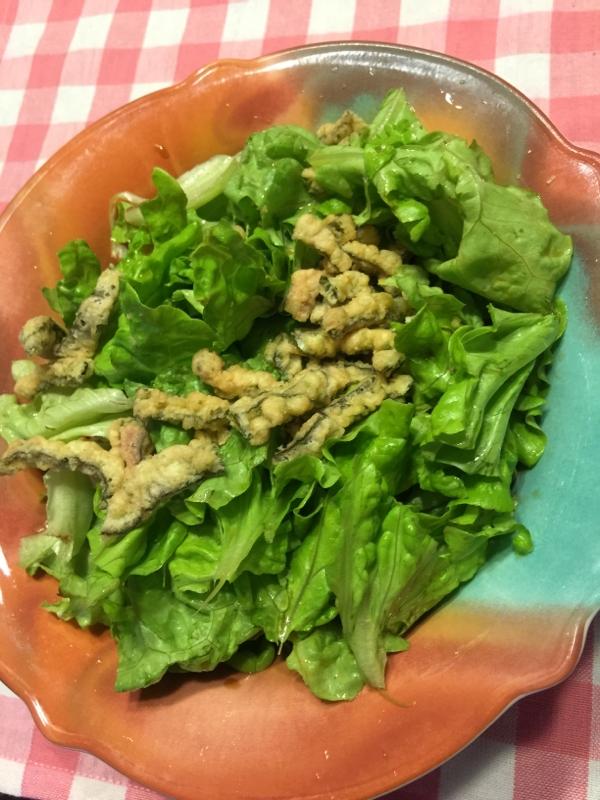 簡単すぎ*グリーンリーフレタスサラダ