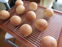 国産小麦(ニシノカオリ)で黒糖パン
