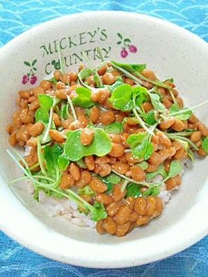 納豆の食べ方-スプラウト♪