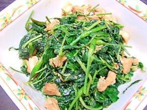 鶏肉と葉唐辛子の炒め煮
