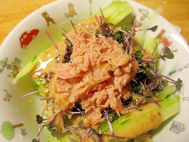 きゅうり、レタス、紫キャベツの芽、ツナのサラダ