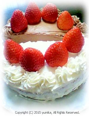 ハーフ&ハーフ デコレーションケーキ
