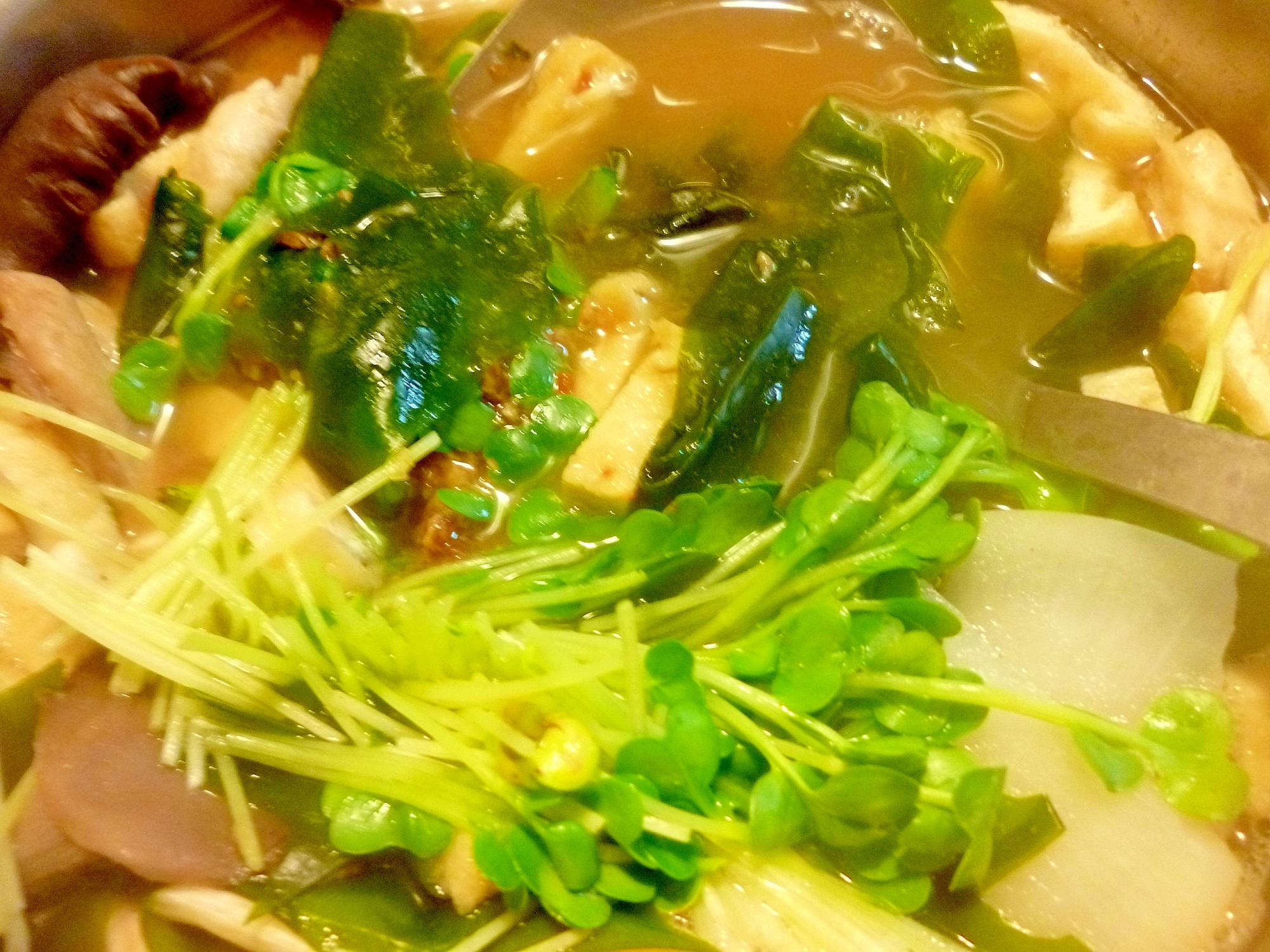 わかめ・刻み揚げ・ヒラタケ・貝割れ・大根の味噌汁