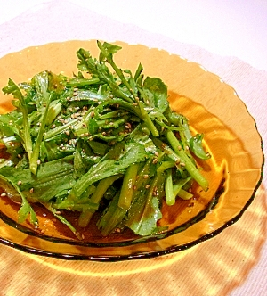 生春菊がシャキシャキおいしい♪春菊のサラダ