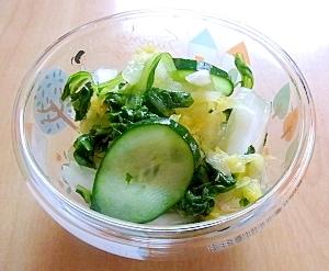 白菜とリーフレタスの漬物
