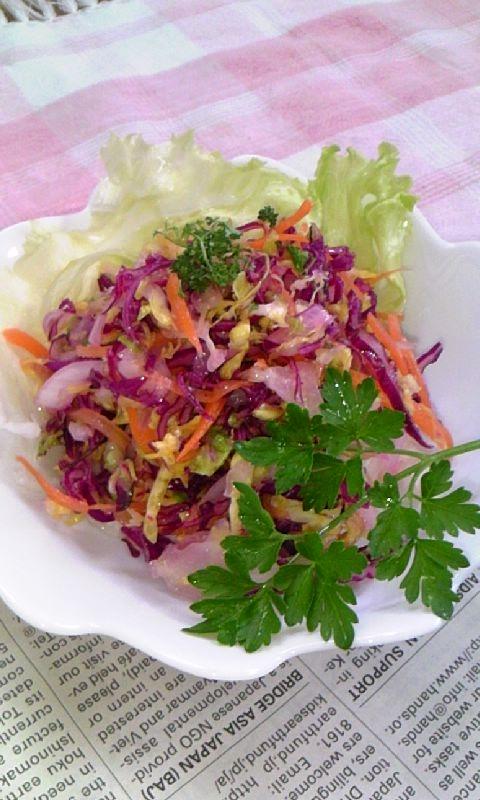 春キャベツ&紫キャベツdeキャベツサラダ♪