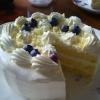 ブルーベリー&ホワイトチョコのデコレーションケーキ