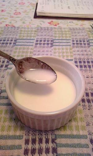 糖質制限朝ご飯用 低糖質ホットヨーグルト