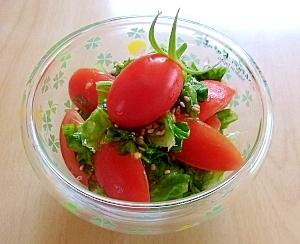リーフレタスとトマトのサラダ