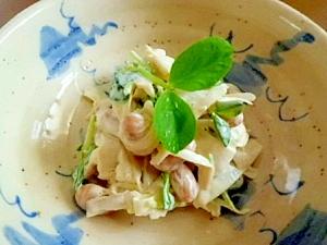 ごぼうと大豆と豆苗のサラダ
