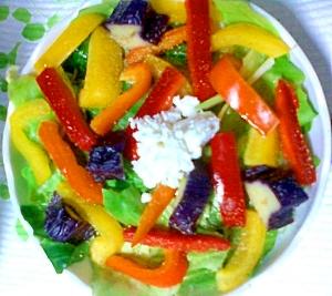 キャベツとパプリカ、茄子のカッテージチーズのサラダ