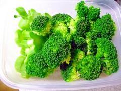 【冷凍保存方法】ブロッコリー