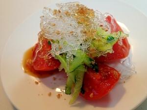 何この感じ!?海藻麺のきらきらプチプチ不思議食感にハマる人続出!