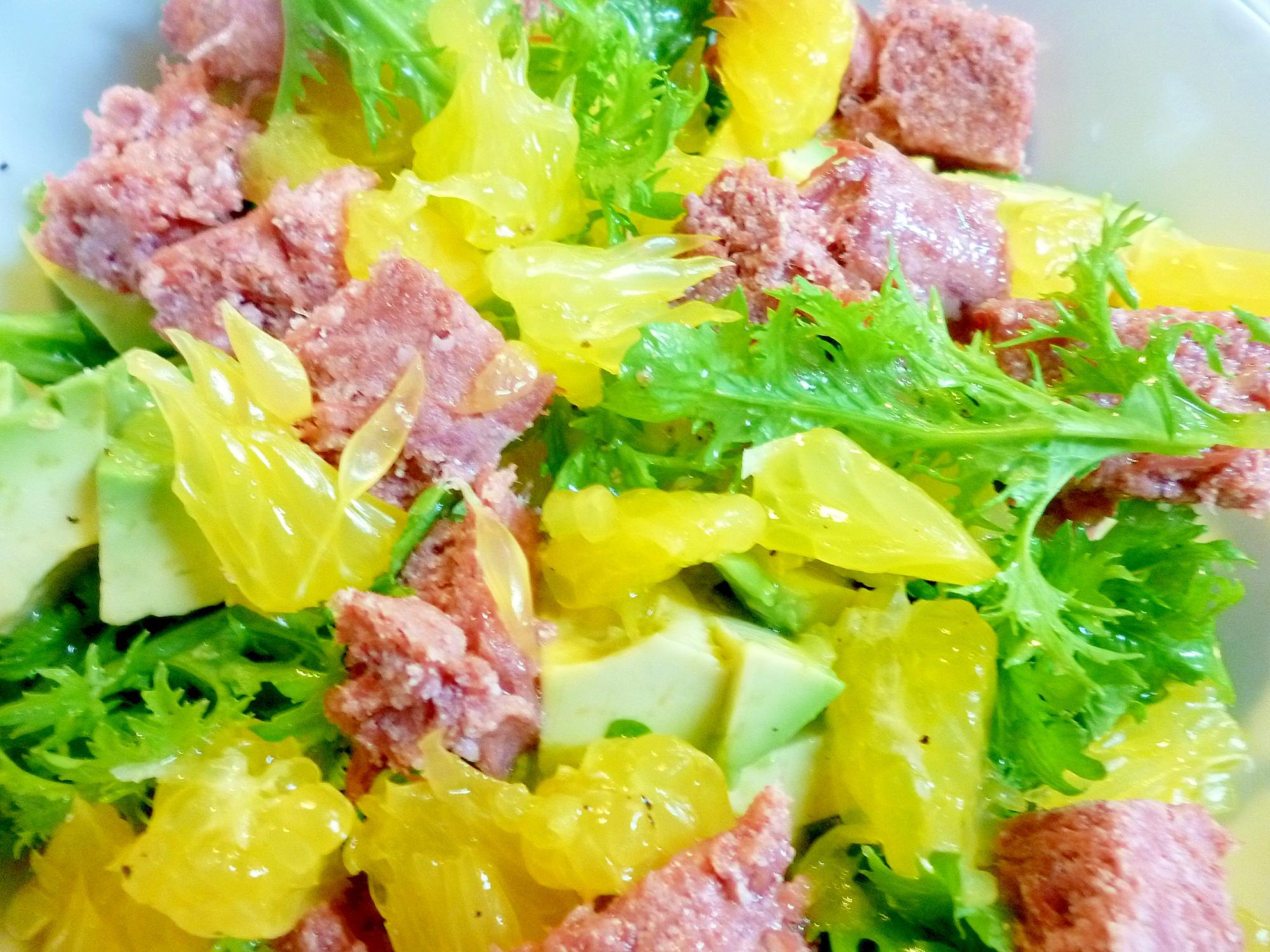 コンビーフ・甘夏・わさび菜のサラダ