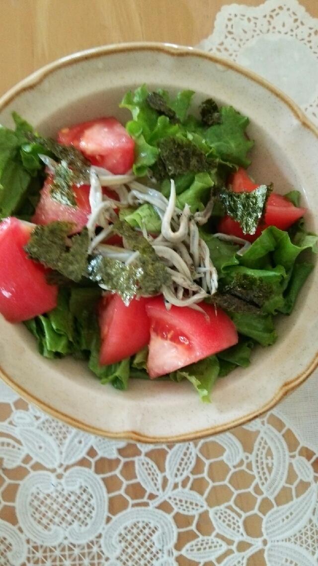 リーフレタスとトマト、シラスのサラダ