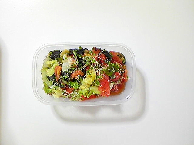 キャベツ、トマト、スプラウト、わかめのサラダ