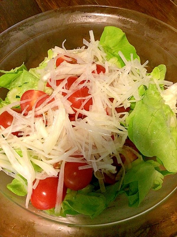 ミニトマトたっぷり☆サラダ菜サラダ
