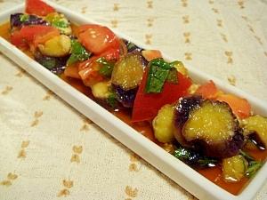 レンジで簡単♪ナスとトマトのさっぱりマリネ レシピ・作り方 by nyapikox|楽天レシピ