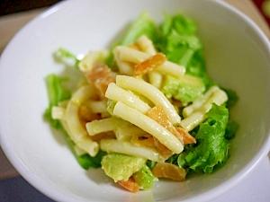 柿の消費!!柿とアボカドのマカロニサラダ