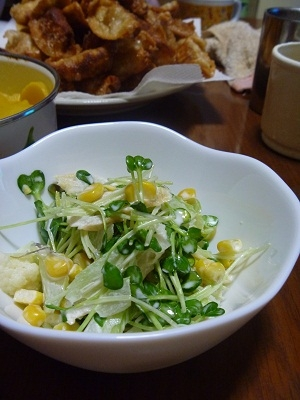 香味野菜好きにはたまらないカイワレとセロリのサラダ