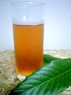 クセがなく美味しい生葉で作るびわ茶♪