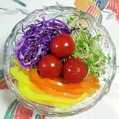 紫キャベツとパプリカのサラダ