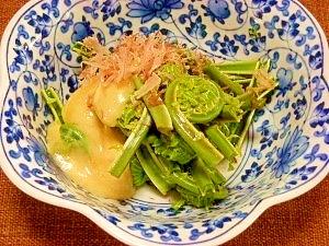 コゴミの酢味噌マヨ