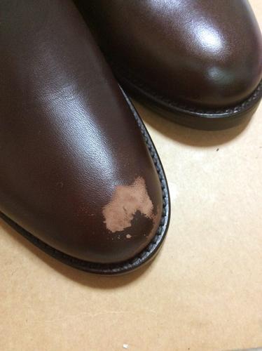 カラー/20g (代引き不可) 【靴 ...