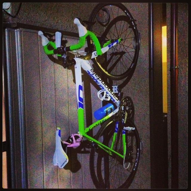 Leonardo( 壁掛け型自転車ラック ...