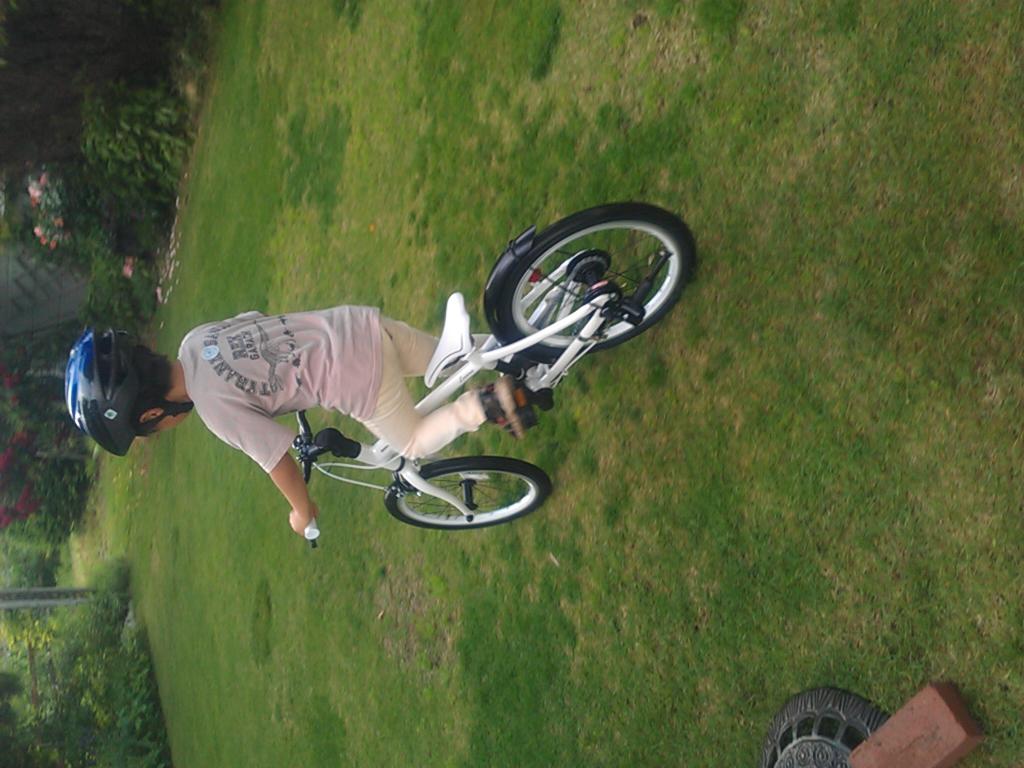 自転車の 子供 自転車 20インチ 軽量 : 18型 LEV18 子供のための軽量 ...