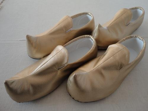 アシームとシャバーンの靴