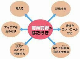 rblog-20150912145728-00.jpg