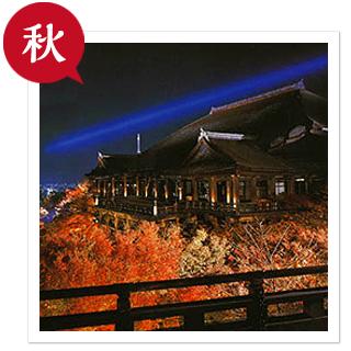 清水寺ライトアップ.jpg