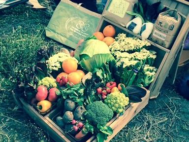 野菜集合.jpg.jpg