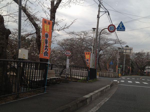 20130426厳美渓桜2
