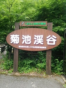 菊池渓谷の看板