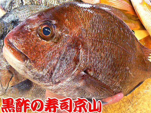 港区 寿司 出前 虎ノ門