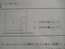 わかりやすい図.jpg