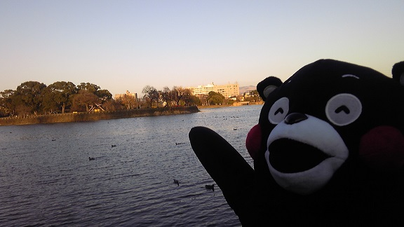 くまモン江津湖14