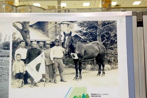 厚別歴史写真パネル展 軍用馬出征